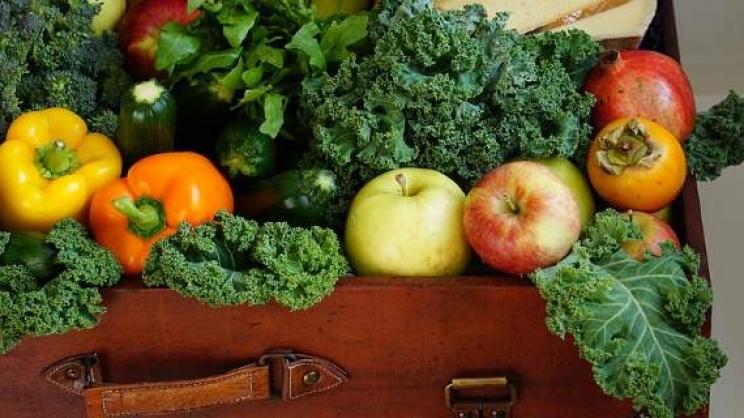 Ρεκόρ στις εξαγωγές φρούτων και λαχανικών