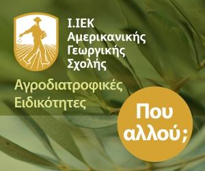 AMERIKANIKH 7-8