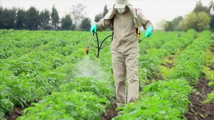 Η αμφιλεγόμενη γλυφοσάτη και οι καρκίνοι των αγροτών